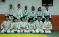 cs-mioveni-judo-cupa-ramnicului-8-9-aprilie-2015