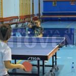 cs-mioveni-tenis-de-masa-juniori (10)