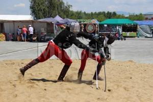 festivalul-medieval-curtea-domneasca-curtea-de-arges-2016 (22)