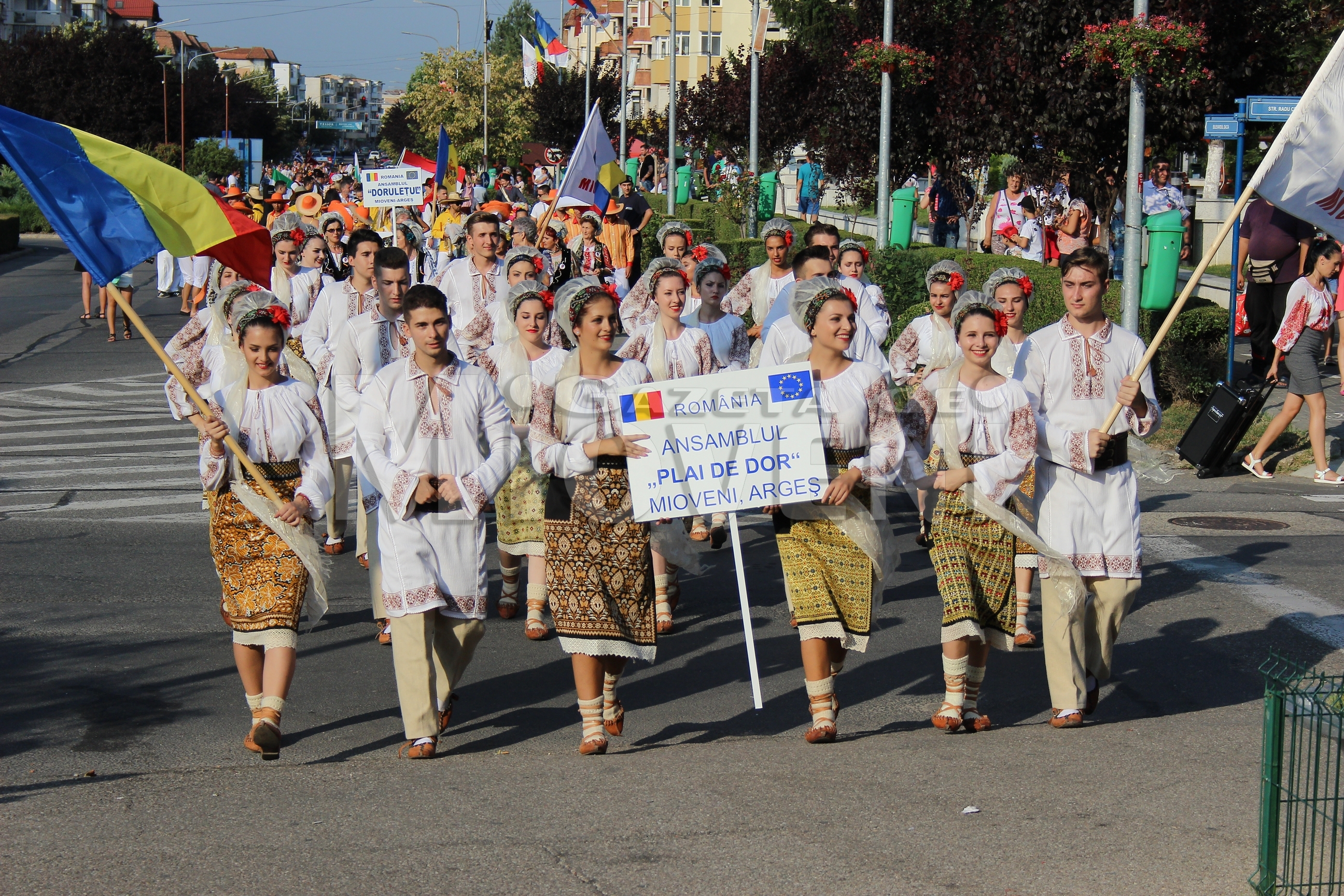 festivalul-international-de-folclor-carpati-mioveni-11-august-2016 (4)