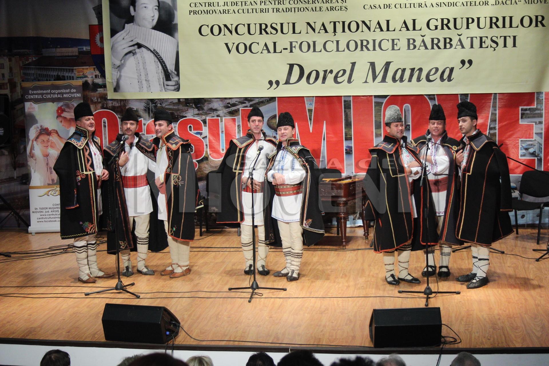 festivalul-dorel-manea-mioveni-2016-12