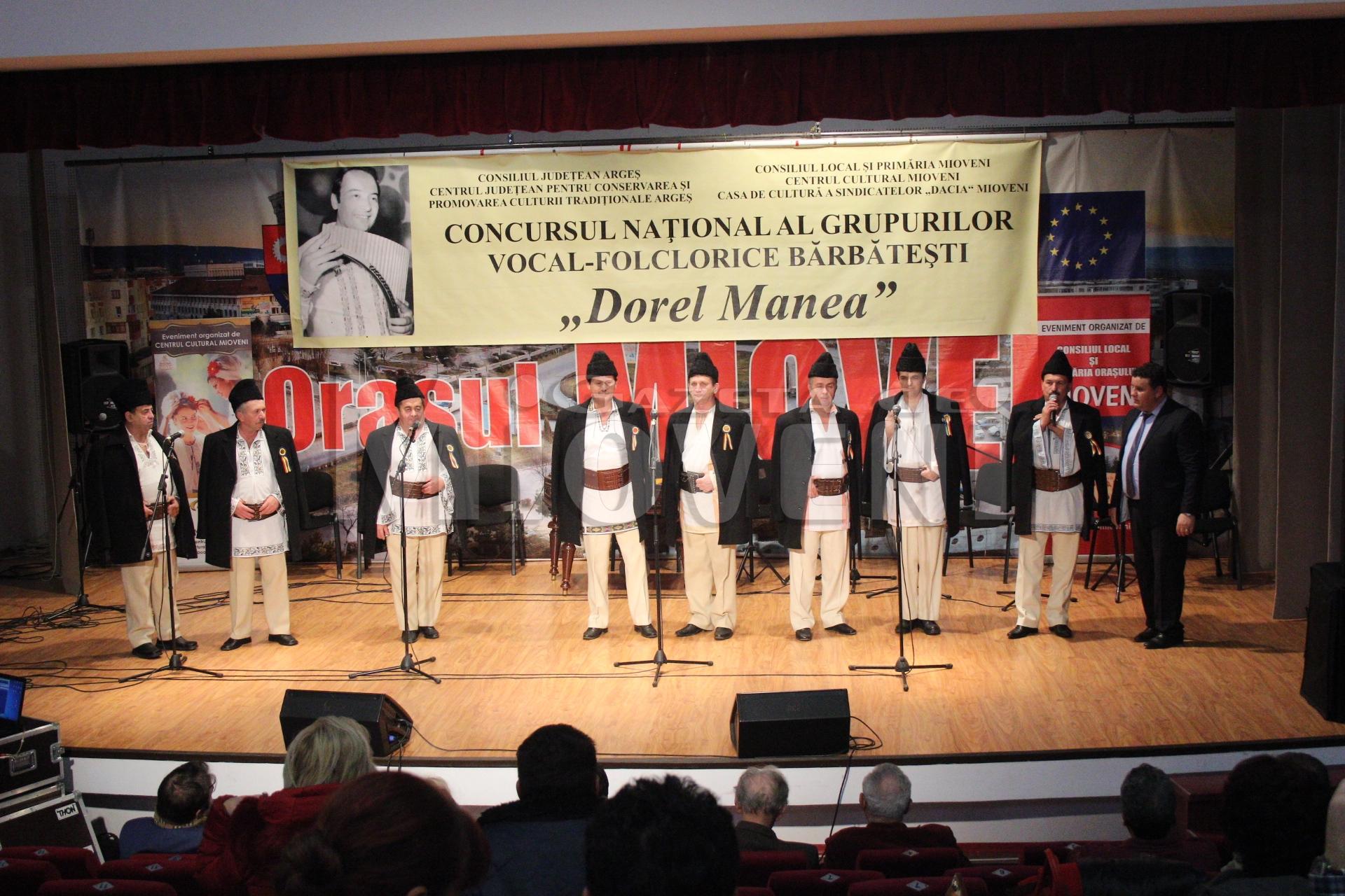 festivalul-dorel-manea-mioveni-2016-13