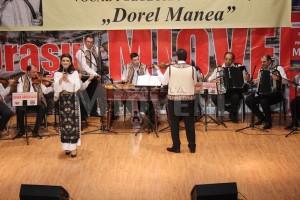 festivalul-dorel-manea-mioveni-2016-2