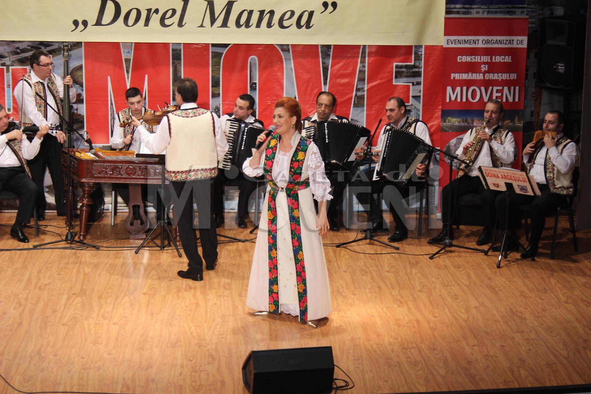 festivalul-dorel-manea-mioveni-2016-3