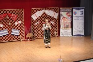 spectacol-caritabil-licitatie-centrul-cultural-mioveni-18-ian-2017 (12)