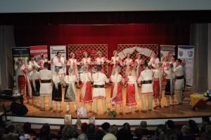 spectacol-caritabil-licitatie-centrul-cultural-mioveni-18-ian-2017 (8)