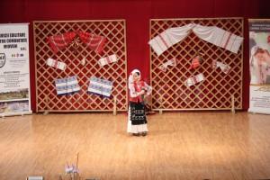 spectacol-caritabil-licitatie-centrul-cultural-mioveni-18-ian-2017 (9)
