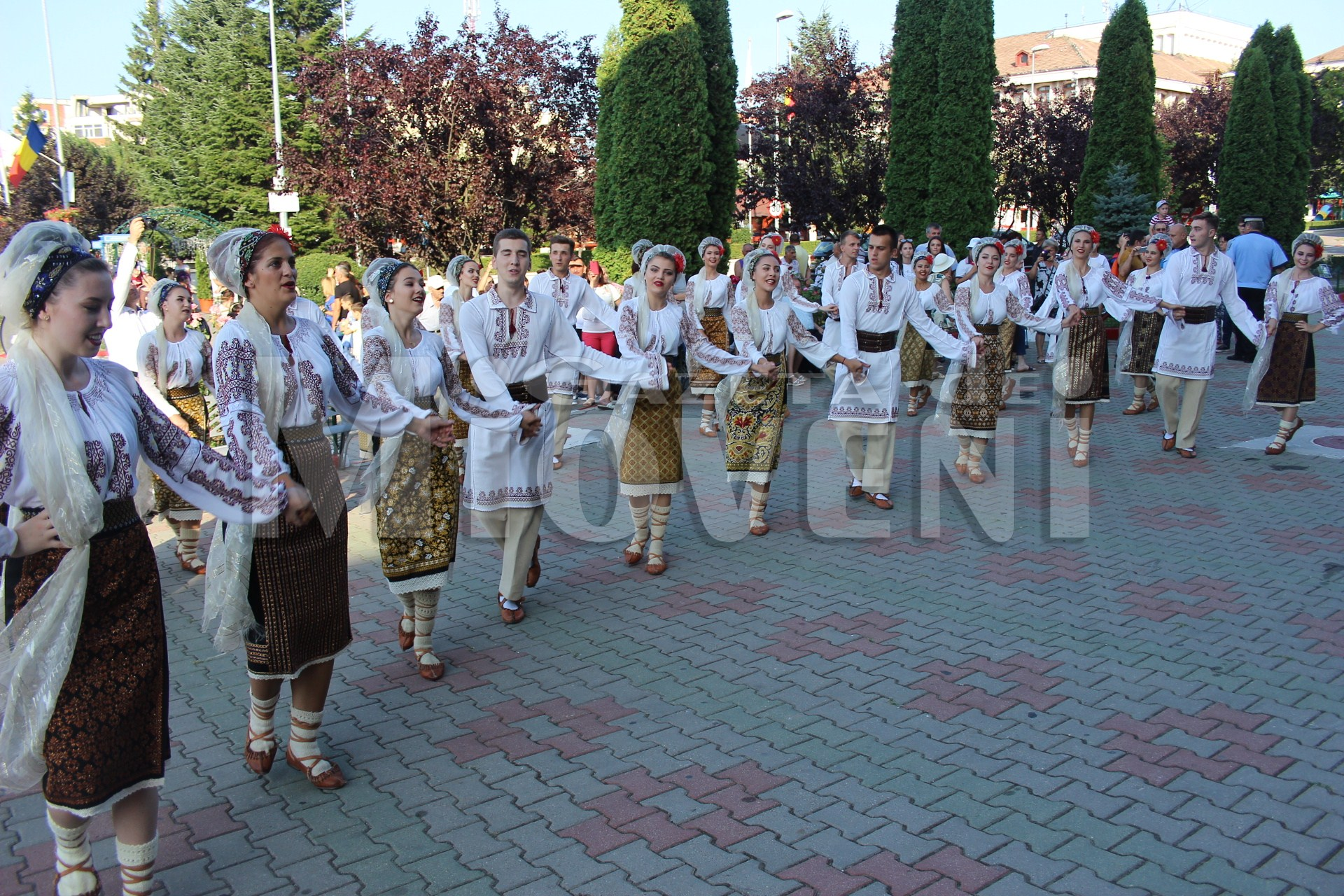 festivalul-carpati-mioveni-august-2017 (21)