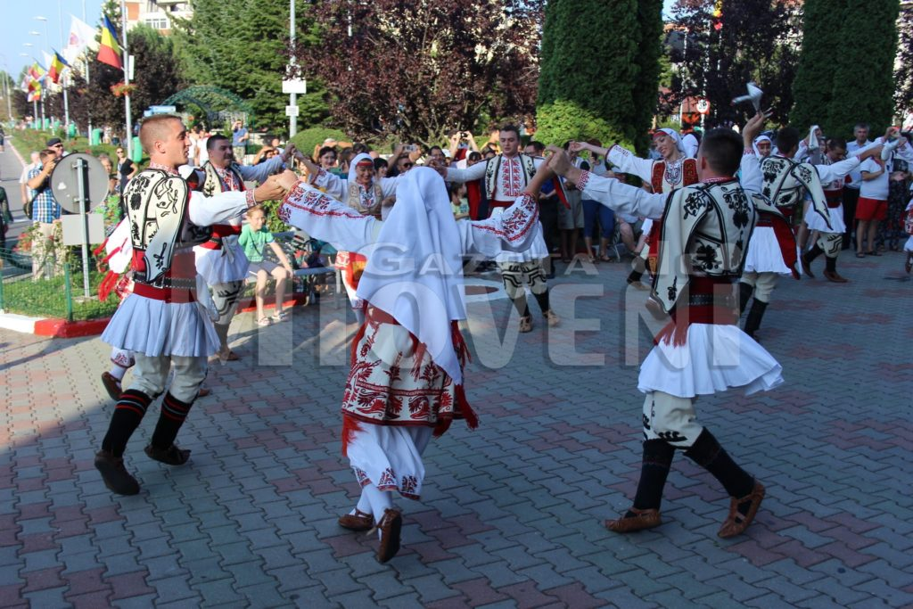 festivalul-carpati-mioveni-august-2017 (24)