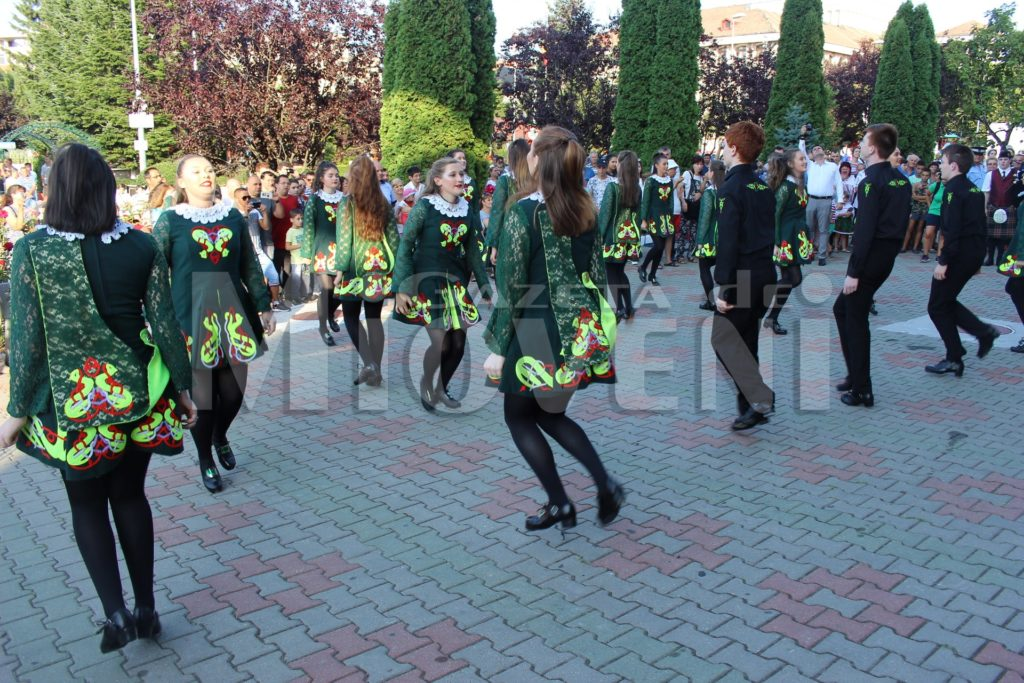 festivalul-carpati-mioveni-august-2017 (27)