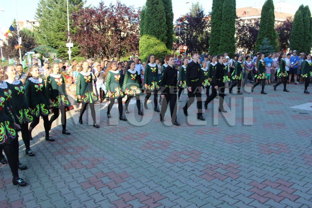 festivalul-carpati-mioveni-august-2017 (28)