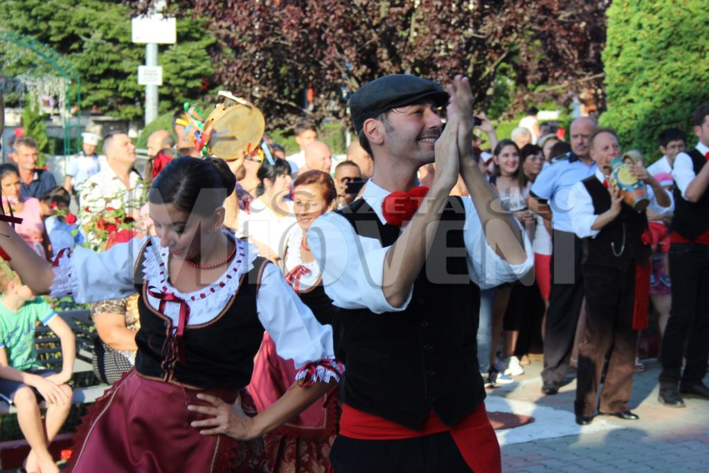 festivalul-carpati-mioveni-august-2017 (29)