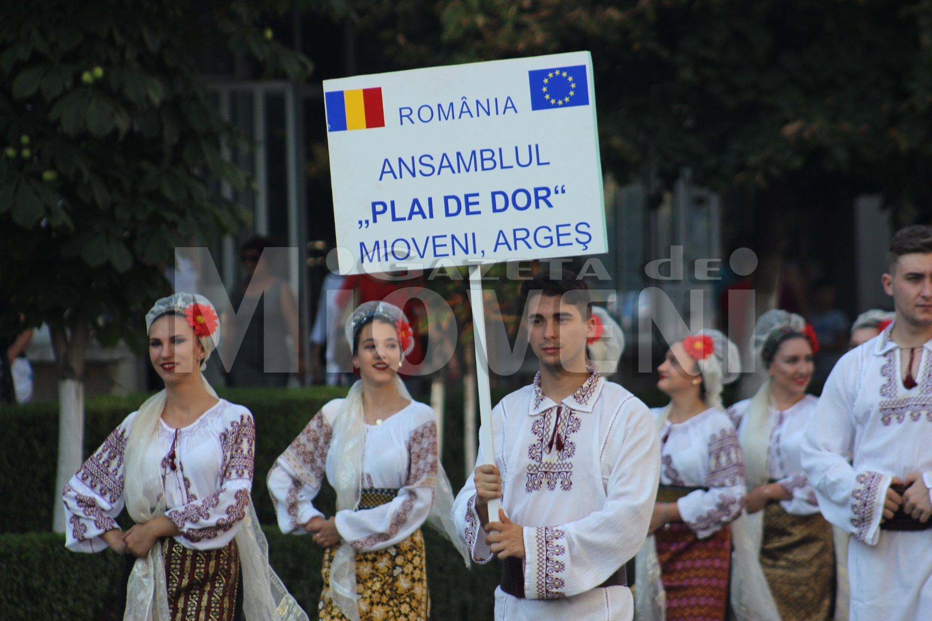 festivalul-carpati-mioveni-august-2017 (3)
