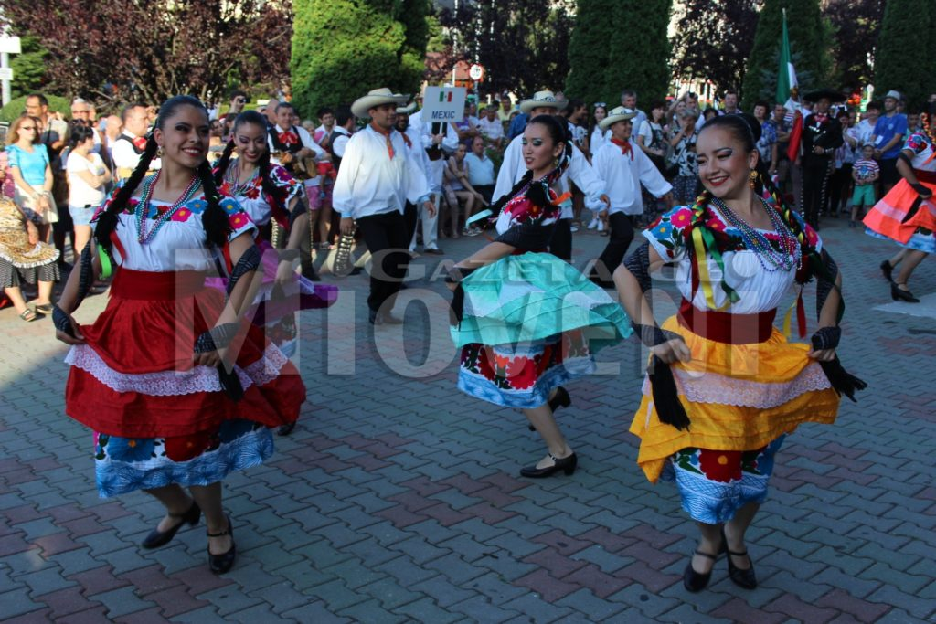 festivalul-carpati-mioveni-august-2017 (30)