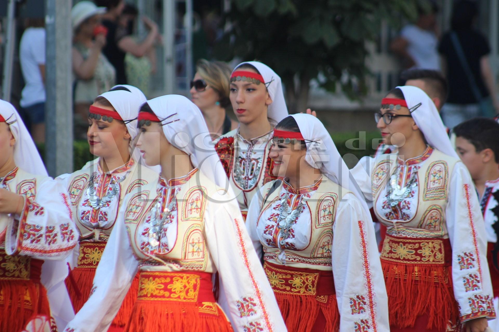 festivalul-carpati-mioveni-august-2017 (7)