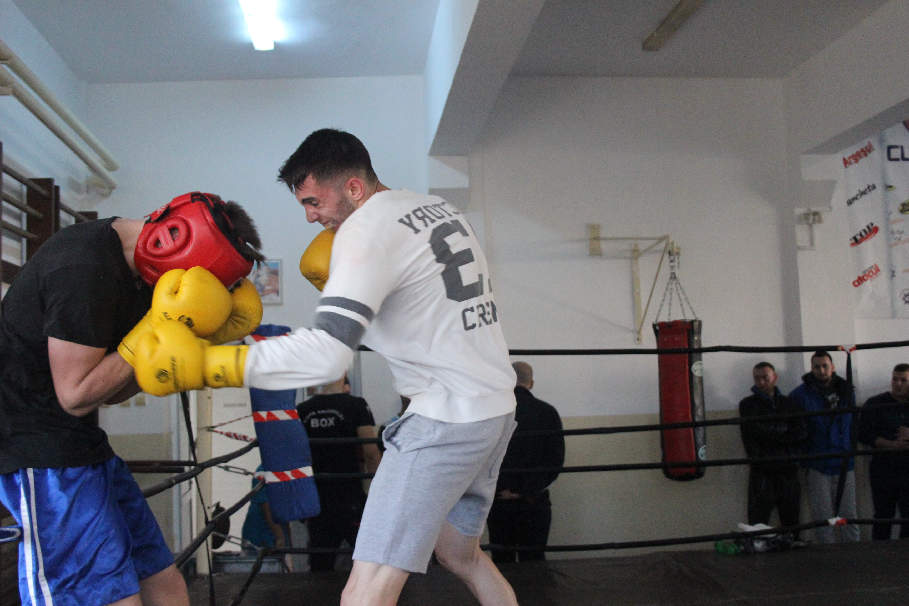 sparring-cs-mioveni-box (7)