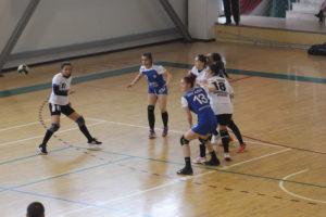 fc-arges-cs-dacia-mioveni-2012-handbal-3-mar-2018 (2)